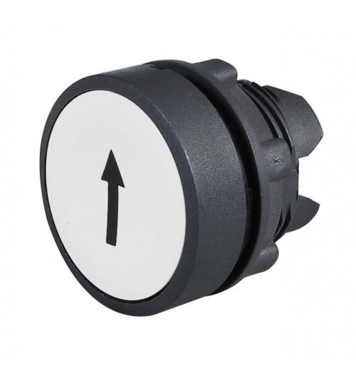 Flush Push Button Up  065731
